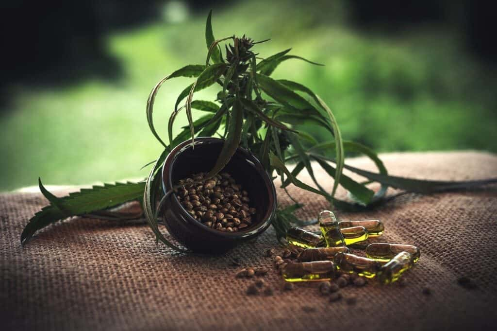 Healthy Effects of CBD Products on the Human Body 3